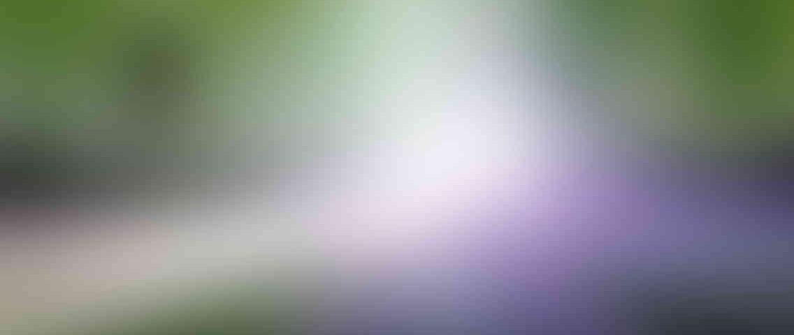 http://www.tcl-digitrade.cz/wp-content/uploads/2013/03/standout_slide_1_v01-1136x480.jpg