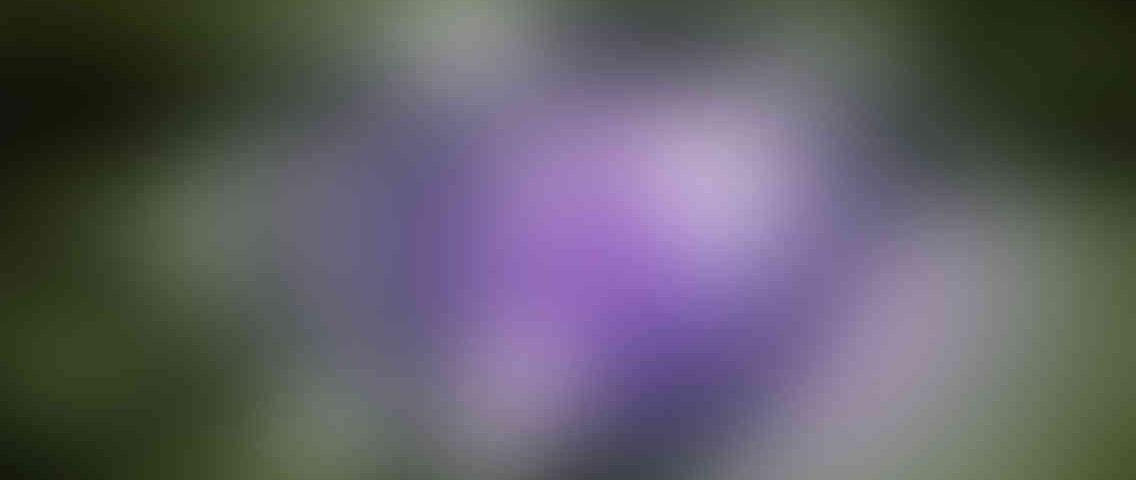 http://www.tcl-digitrade.cz/wp-content/uploads/2013/03/standout_slide_3_v01-1136x480.jpg